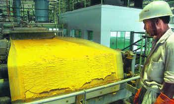 כשר למהדרין בהשגחת הרב שומבליצקי - עוגות צהובות
