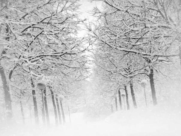 snowstorma2