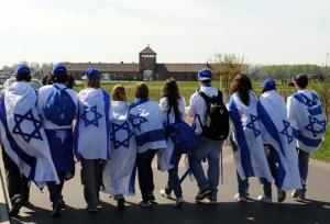 לחלום שואה, לחשוב שואה: מצעד החיים באושוויץ